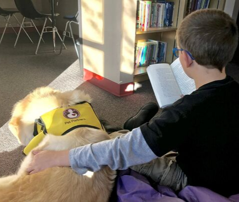 image of a boy reading to a dog